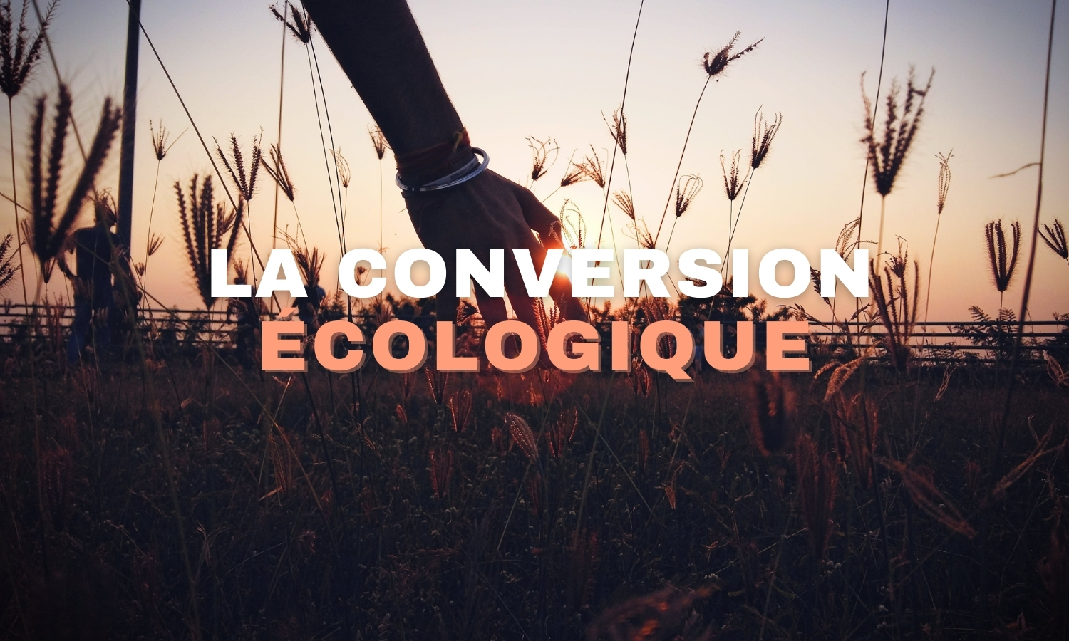 LA CONVERSION ÉCOLOGIQUE